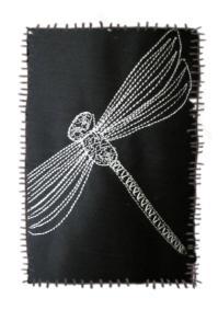 kj 10 001 dragonfly.jpg